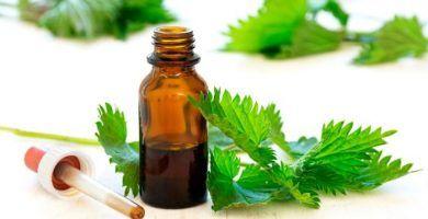aceite esencial de ortiga